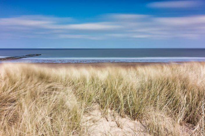 Dunes sur la plage de Knokke le Zoute