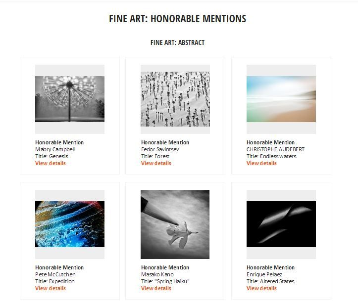 Gagnants du concours ND Awards 2015 catégorie Abstract